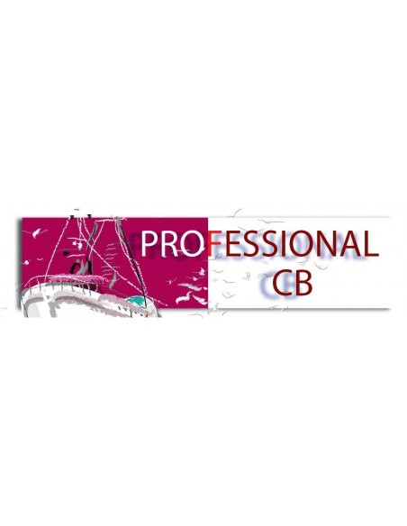 Professional CB